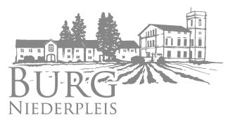 Burg Niederpleis
